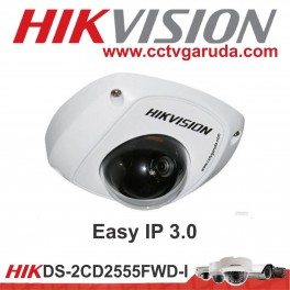 Easy IP 3.0 DS-2CD2425FWD-I