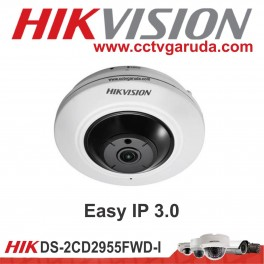 Easy IP 3.0 DS-2CD2725FHWD-IZS